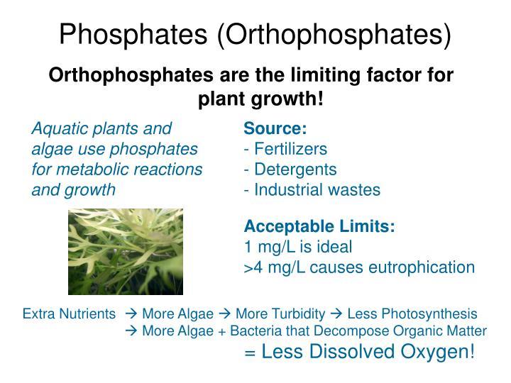 Phosphates (Orthophosphates)
