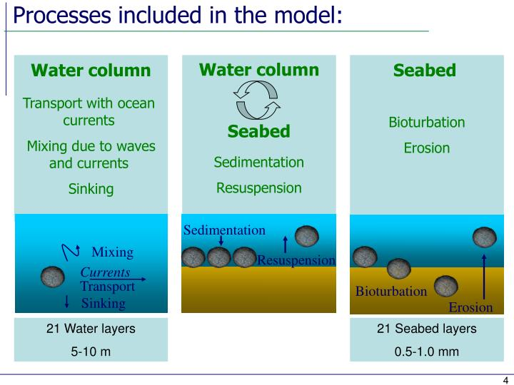 Processes included in the model: