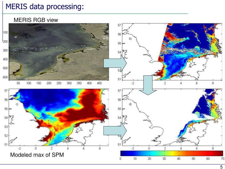 MERIS data processing: