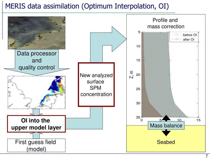 MERIS data assimilation (Optimum Interpolation, OI)