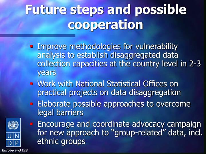 Future steps and possible cooperation