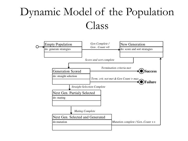 Dynamic Model of the Population Class