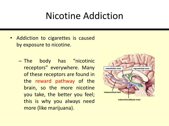 Nicotine Addiction