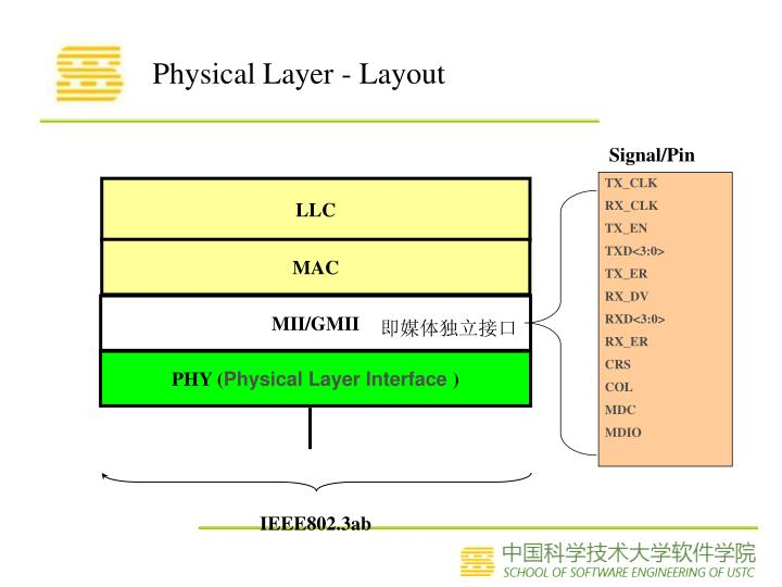 Physical Layer - Layout