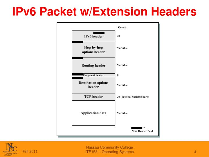 IPv6 Packet w/Extension Headers