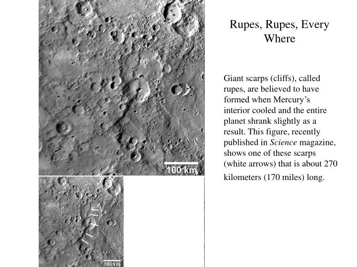 Rupes, Rupes, Every Where