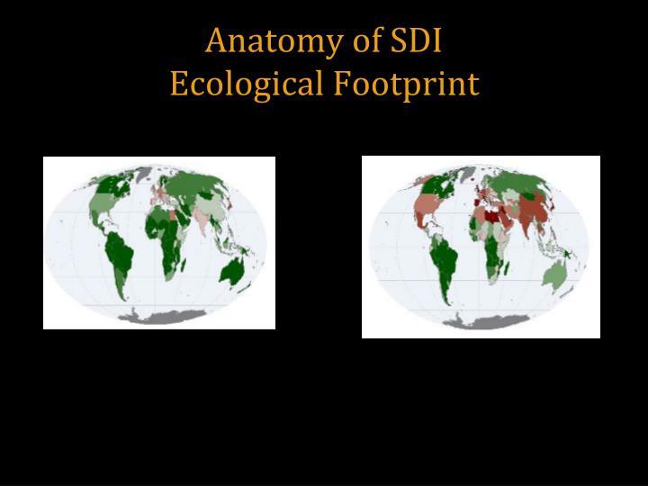 Anatomy of SDI