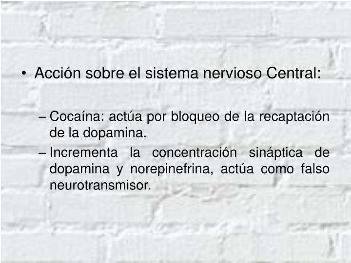 Acción sobre el sistema nervioso Central: