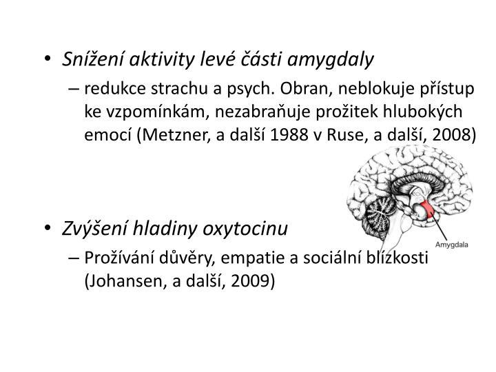 Snížení aktivity levé části amygdaly