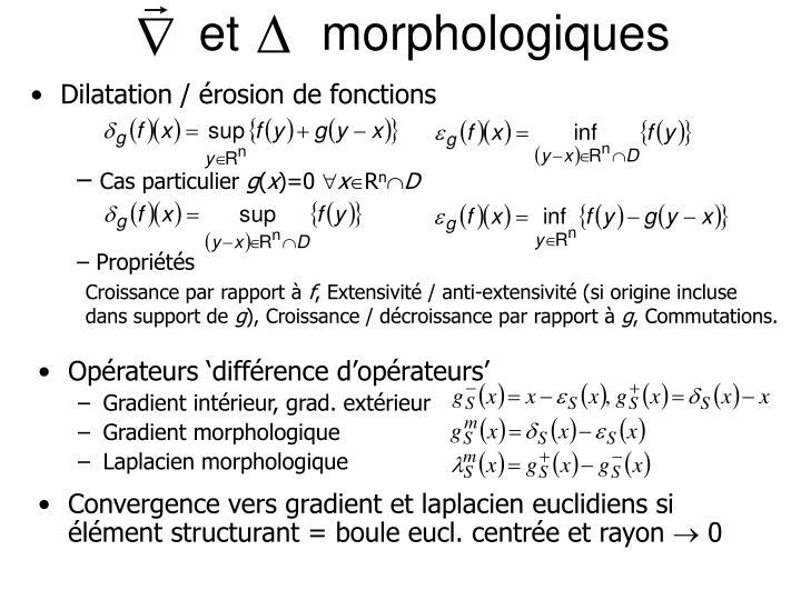 et      morphologiques