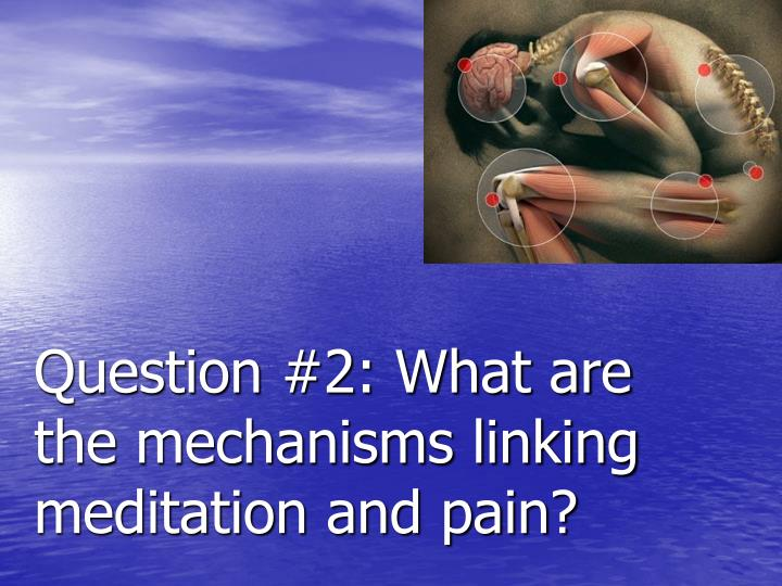 Question #2: What are the mechanisms linking meditation and pain?