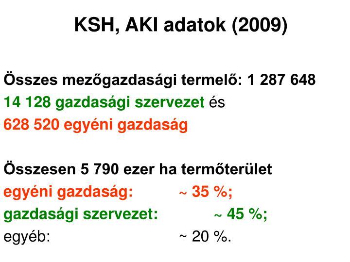 KSH, AKI adatok (2009)