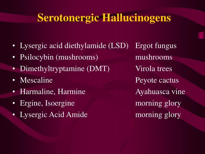 Lysergic acid diethylamide (LSD)Ergot fungus