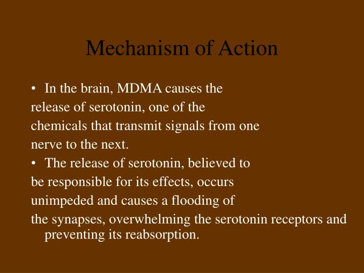 In the brain, MDMA causes the