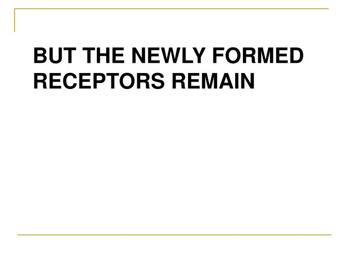 BUT THE NEWLY FORMED RECEPTORS REMAIN
