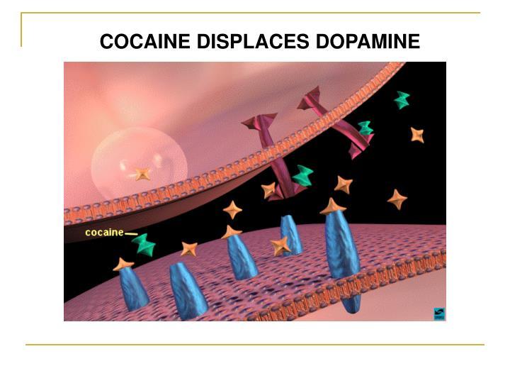COCAINE DISPLACES DOPAMINE