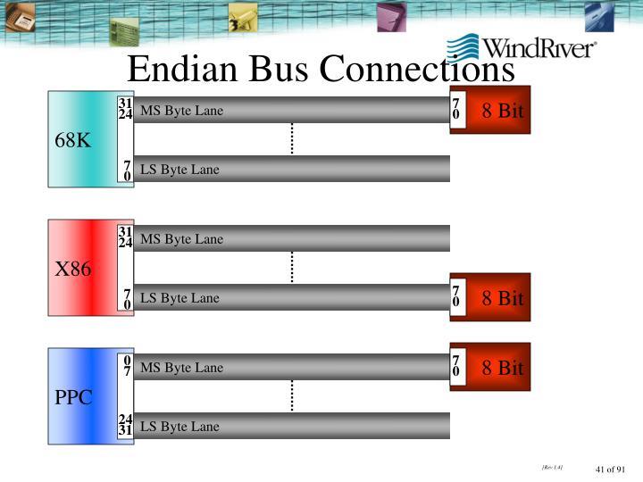 Endian Bus Connections