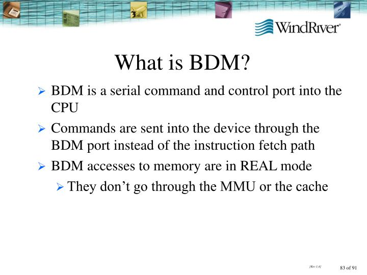 What is BDM?
