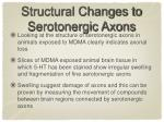 structural changes to serotonergic axons