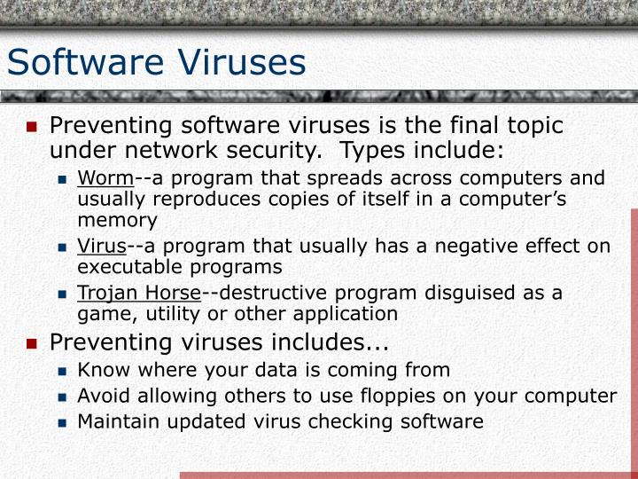 Software Viruses