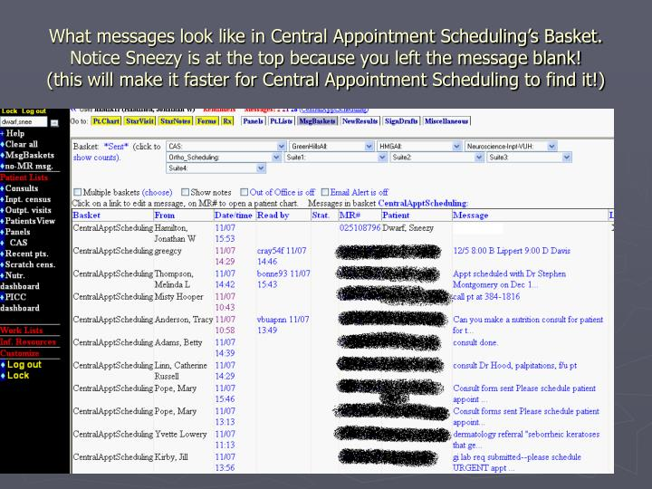 What messages look like in Central Appointment Scheduling's Basket.