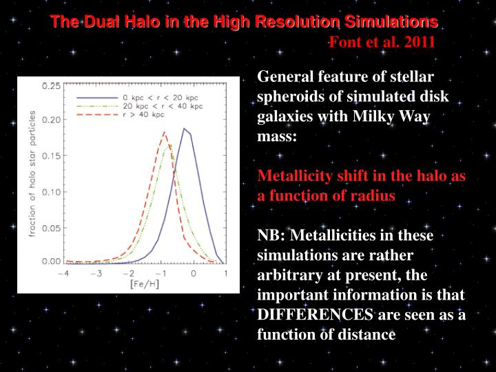 The Dual Halo in the High Resolution Simulations