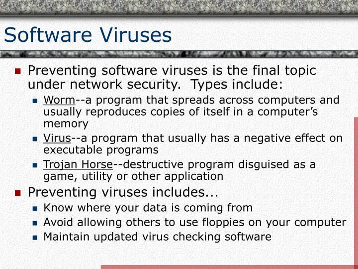 Software Viruses