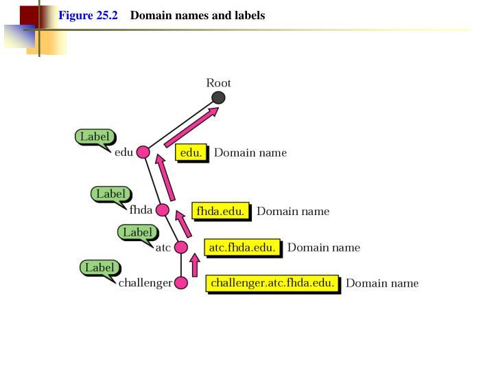 Figure 25.2