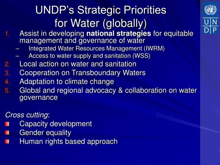 UNDP's Strategic Priorities