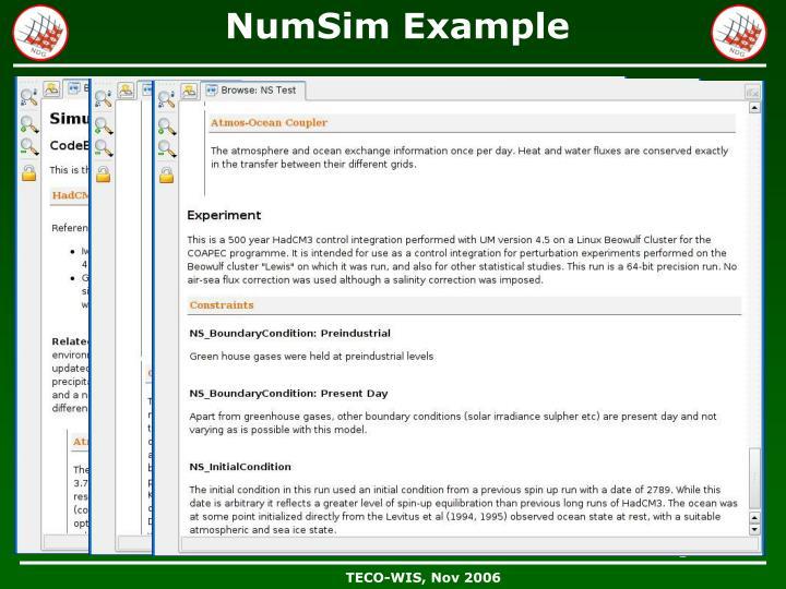 NumSim Example