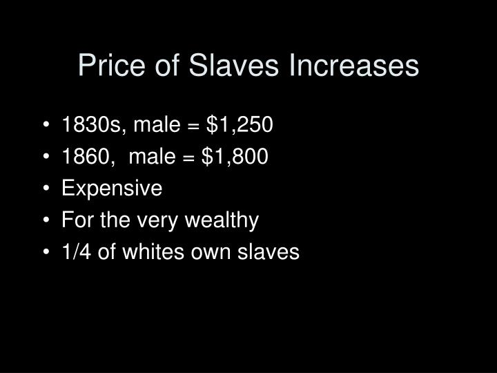 Price of Slaves Increases