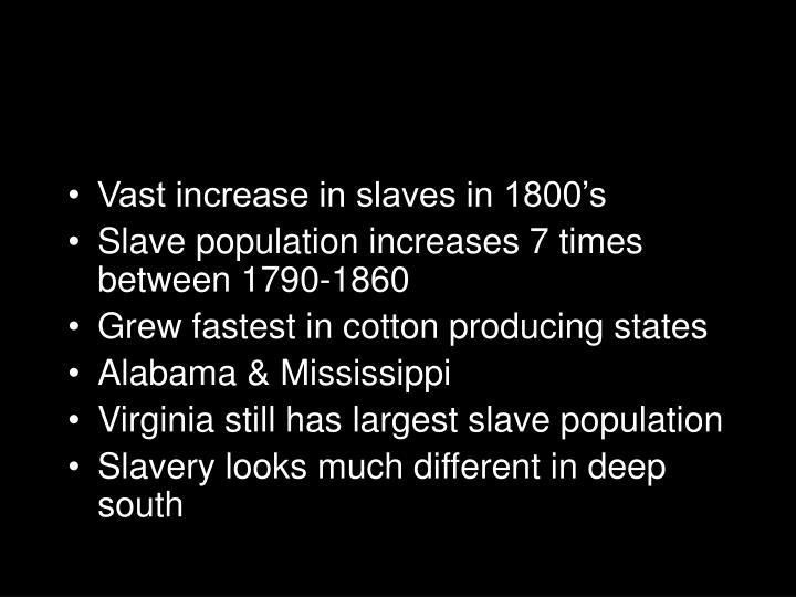 Vast increase in slaves in 1800's
