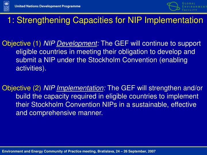 1: Strengthening Capacities for NIP Implementation