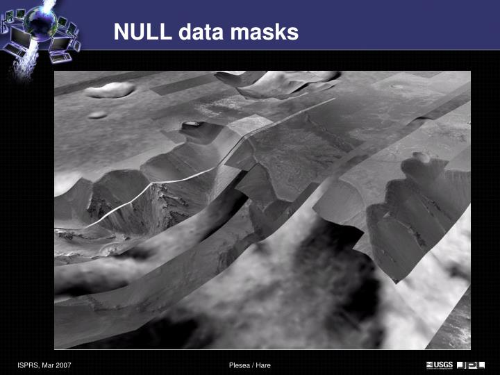 NULL data masks