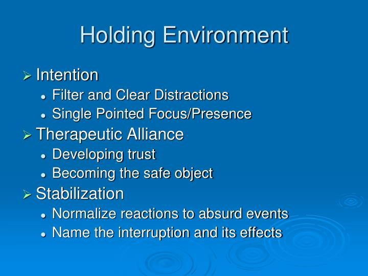Holding Environment