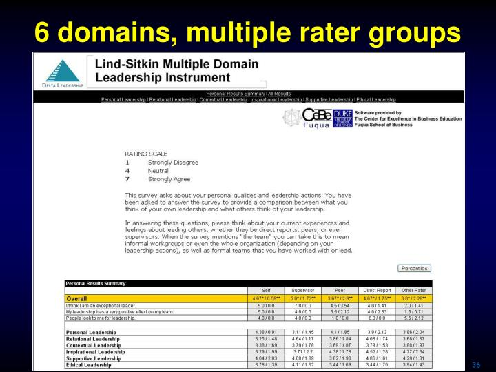 6 domains, multiple rater groups
