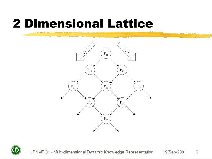2 Dimensional Lattice