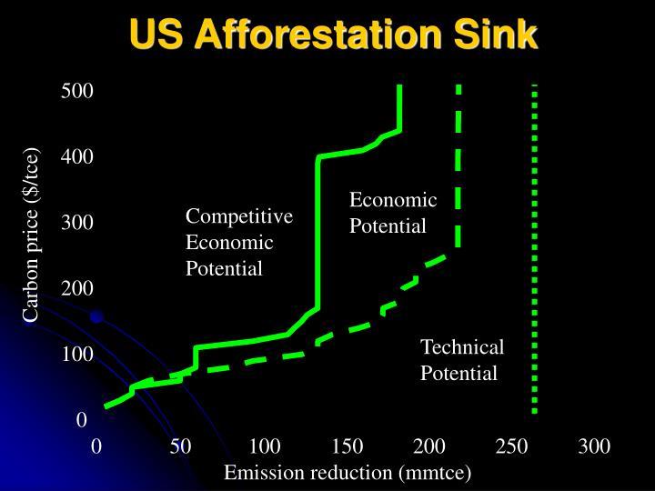 US Afforestation Sink