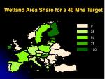 wetland area share for a 40 mha target