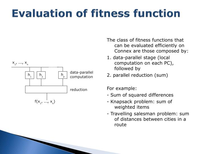 Evaluation of fitness function