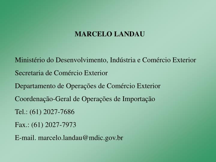 MARCELO LANDAU