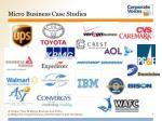 micro business case studies