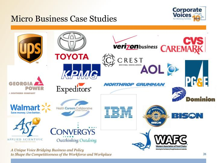 Micro Business Case Studies