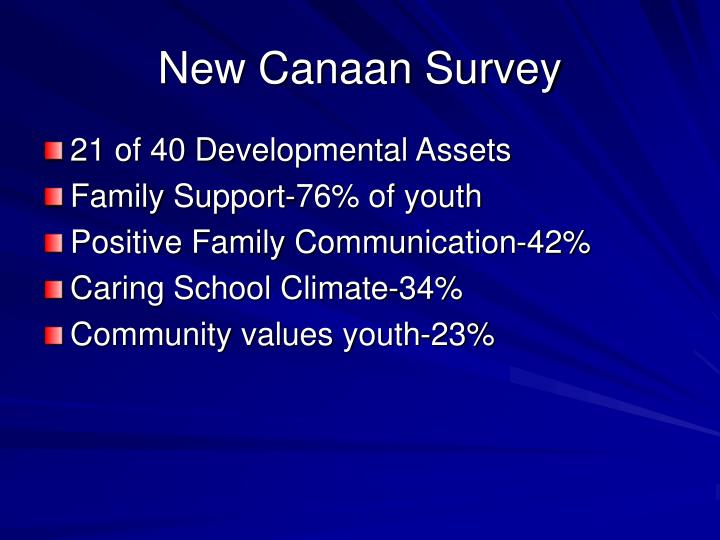 New Canaan Survey