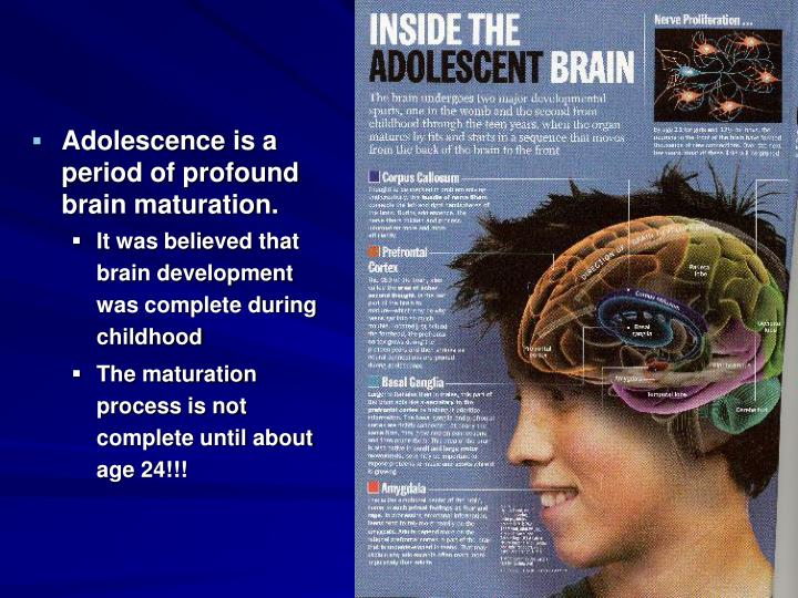 Adolescence is a period of profound brain maturation.