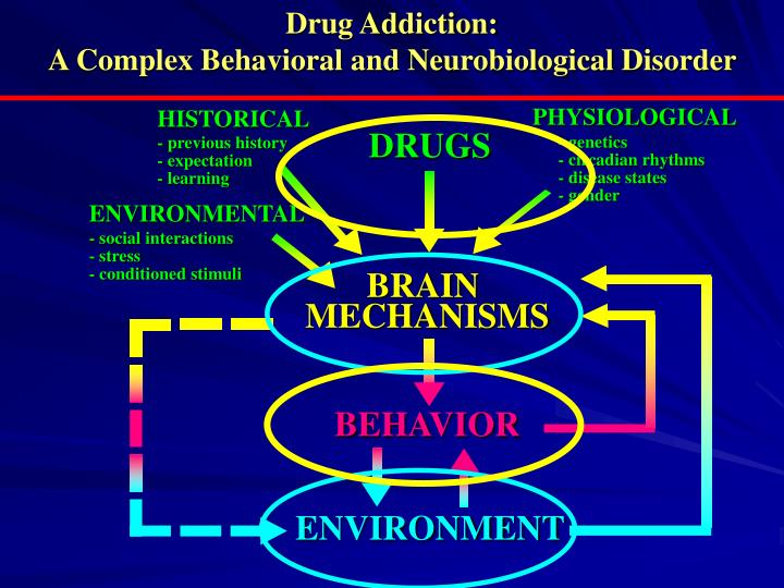 Drug Addiction: