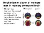 mechanism of action of memory max in memory centres of brain