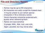 file and directory names