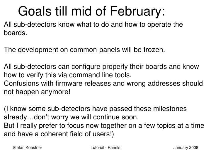 Goals till mid of February: