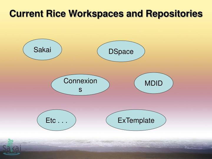 Current Rice Workspaces and Repositories